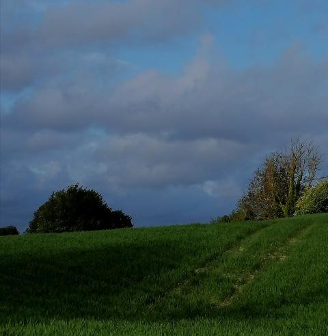 nuages 25